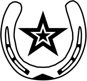 Logo ster predikaat (2)